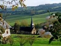 Paysage Normand près de la route du cidre (Copyright L Williamson)